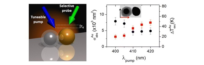 Fano Interference in the Optical Absorption of an Individual Gold-Silver Nanodimer