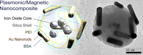 Plasmonic/magnetic Nanocomposites: Gold Nanorods-functionalized Silica coated Magnetic Nanoparticles
