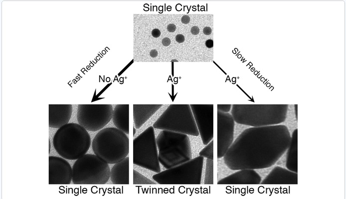 Silver Ions Direct Twin Plane Formation During the Overgrowth of Single Crystal Gold Nanoparticles
