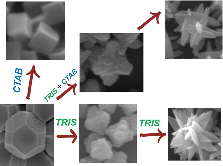 Shape control in ZIF-8 nanocrystals and metal nanoparticles@ZIF-8 heterostructures