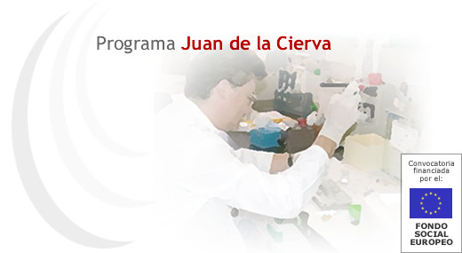 Juan de la Cierva Postdoctoral Grants