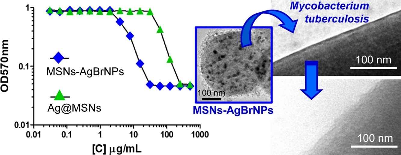 Mesoporous silica nanoparticles containing silver as novel antimycobacterial agents against Mycobacterium tuberculosis