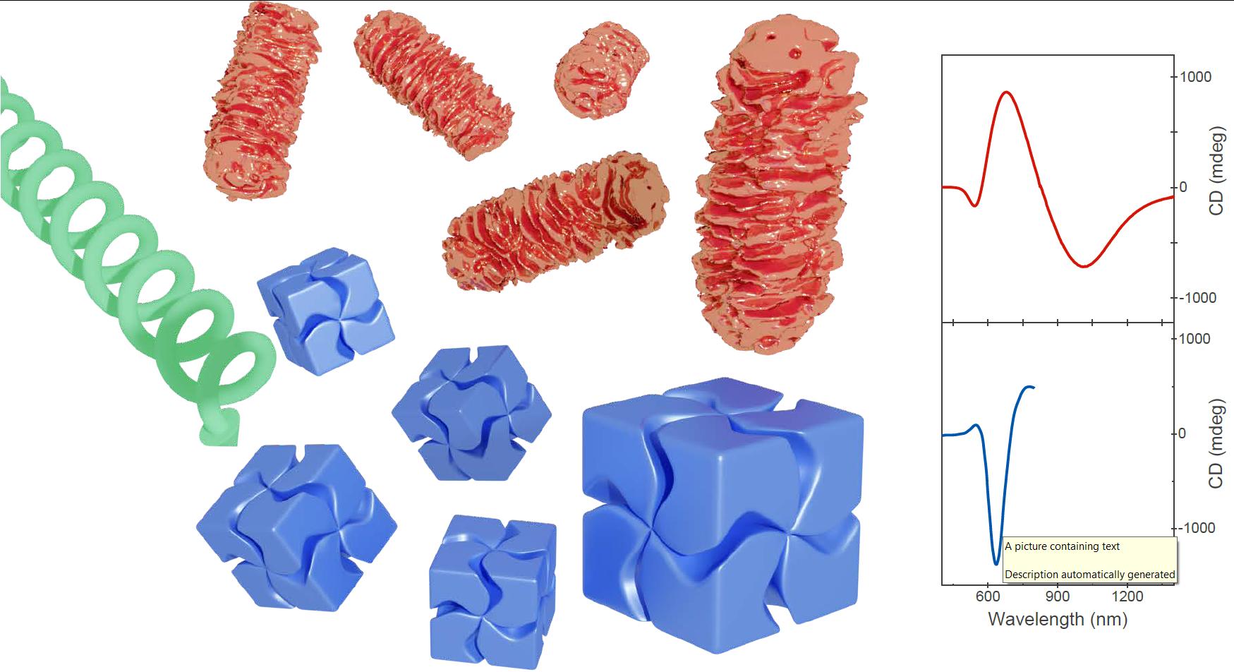Discrete Metal Nanoparticles with Plasmonic Chirality