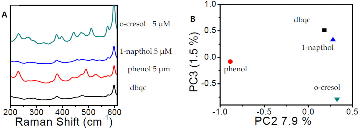 Multiple SERS Detection of Phenol Derivatives in Tap Water