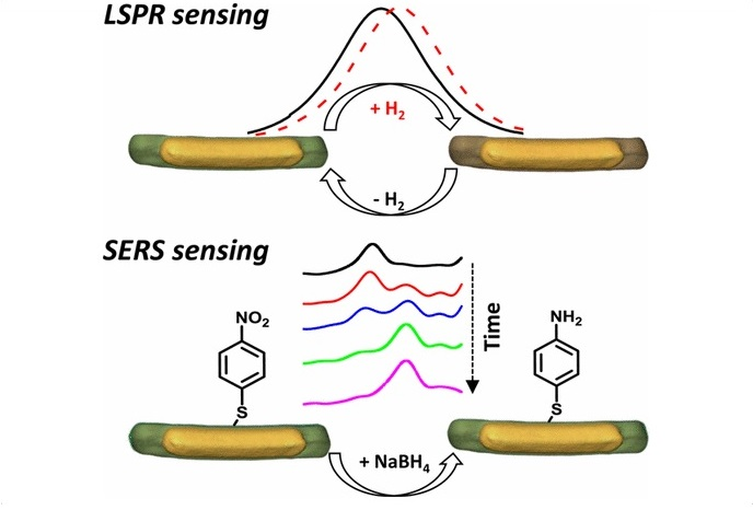 Plasmonic Au@Pd nanorods with boosted refractive index susceptibility and SERS efficiency: A multifunctional platform for hydrogen sensing and monitoring of catalytic reactions