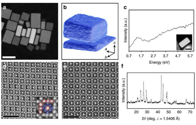 Structure and Vacancy Distribution in Copper Telluride Nanoparticles Determine Plasmon Activity in the Near IR