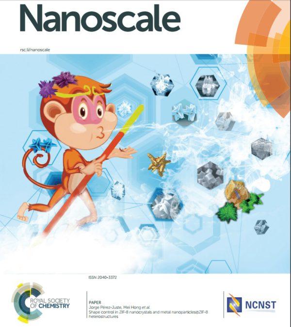 New cover in Nanoscale