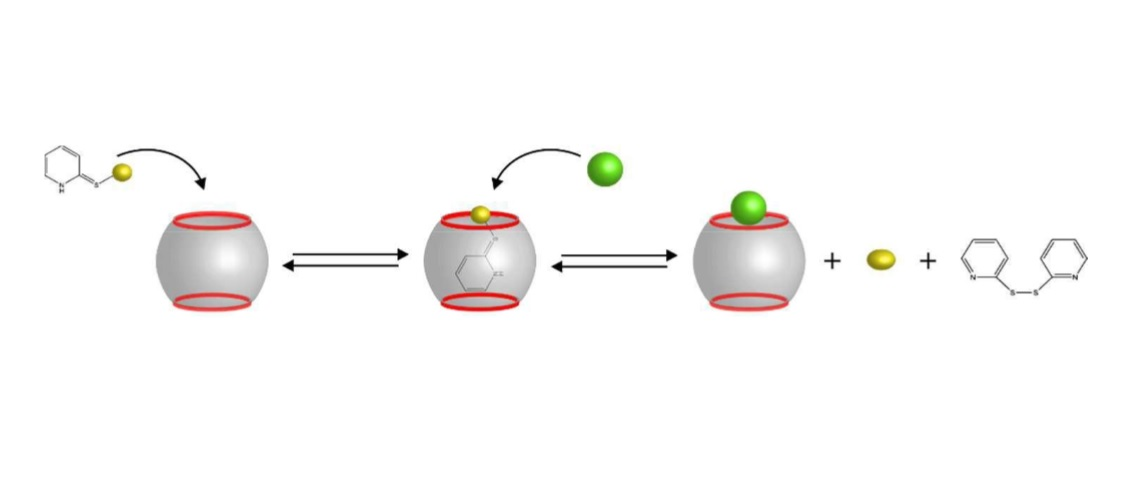 Nitric Oxide Release From a Cucurbituril Encapsulated NO-Donor