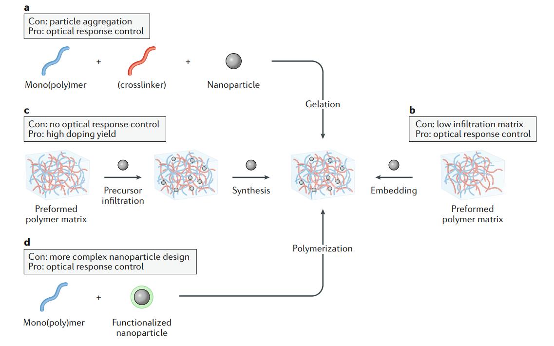 Plasmonic polymer nanocomposites