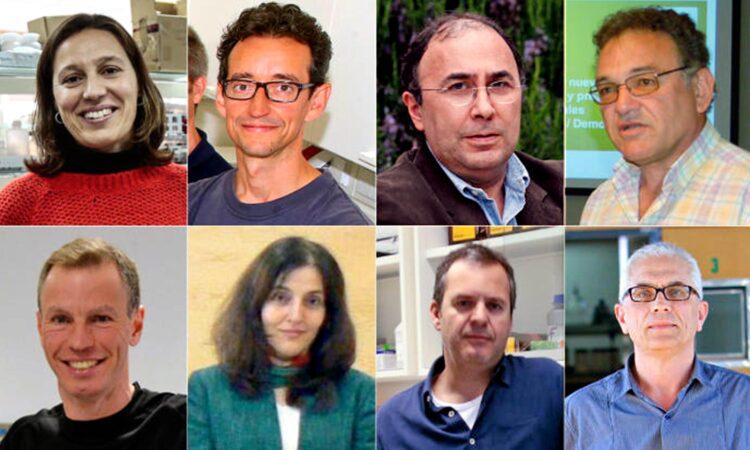 Veintidós expertos de la Universidad de Vigo, entre los mejores científicos españoles de su área