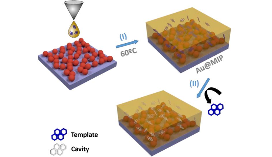 SERS-based molecularly imprinted plasmonic sensor for highly sensitive PAH detection