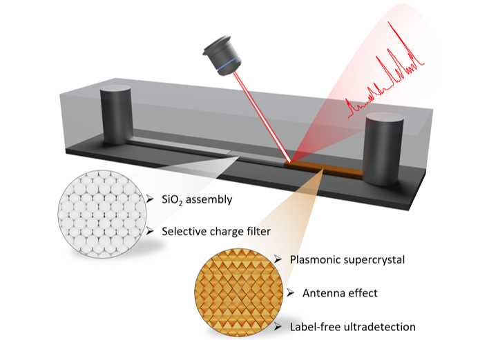 Integrating plasmonic supercrystals in microfluidics for ultrasensitive, label free and selective SERS detection